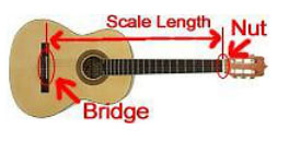Children's guitar showing scale length